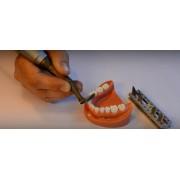 Видео: Dentatus Profin PDX Demo Video