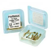 PARMAX GOLD PG  внутриканальные позолоченные штифты
