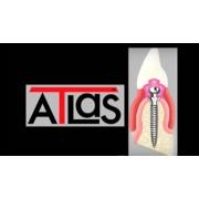 Видео: Нижнечелюстной протез ATLAS